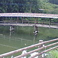 愛媛県内子の屋根付橋