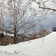 富良野春スキー