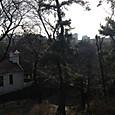 箱根山からの景色