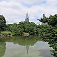 新宿御苑の池と背景のビル